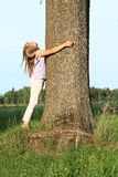 Little kid - girl hugging tree Royalty Free Stock Photos