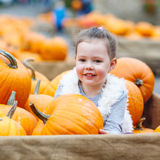 Little kid girl on pumpkin farm celebrating thanksgiving Royalty Free Stock Photography