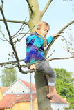 Little kid - girl sitting on tree Royalty Free Stock Image