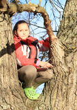Little kid - girl sitting on tree Stock Photo