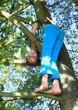 Little kid - girl standing on branch Royalty Free Stock Photo