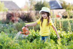 Child girl watering plants in a garden. Little kid girl watering plants with can in a garden Royalty Free Stock Photos