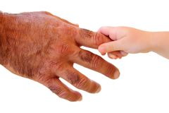 Little kid hand holding hairy father big hand Stock Photos