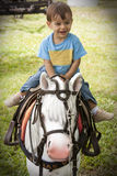 Little Kid in a Horse Stock Photos