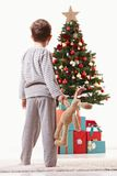 Little kid looking at christmas tree Royalty Free Stock Image
