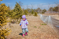 Little kid searching for easter eggs outdoors. Egg hunting: traditional family activity on Easter day Royalty Free Stock Image