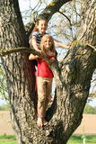 Little kids - girls standing on tree Stock Images
