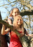 Little kids - girls standing on tree Stock Photo