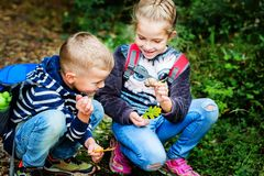 Free Little Kids On A Walk In The Woods Stock Image - 137057331