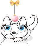 Little kitten. Little cat, funny kitten, new year, happy pet Stock Images