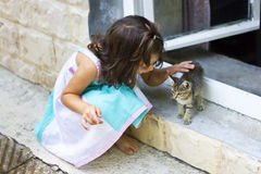 Little kitten and cute little girl to play Royalty Free Stock Photos