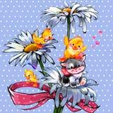 Little kitten and duckling on  beautiful daisy. Little kitten and duckling on  white daisy Royalty Free Stock Image