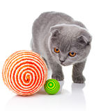 Little kitten playing with balls  on white Stock Photo
