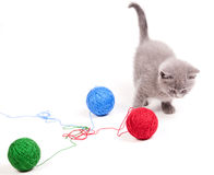 Little kitten playing with woolen clews Royalty Free Stock Images