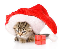 Little kitten in red christmas Santa hat with red box. isolated Royalty Free Stock Photos