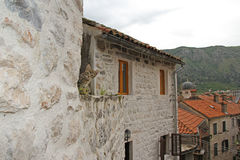 Little kitten on the roof of old building in Kotor Stock Photos
