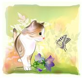 Little kitten watching at butterfly Stock Photo