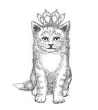 Little kitten wearing crown Royalty Free Stock Photo