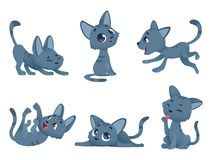Little kittens. Cats domestic cute and funny little baby animals playing smiling vector characters isolated. Kitten character domestic, happy animal kitty royalty free illustration