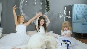 Little ladies with artificial snow on winter photo shoot with white cute dog on background New Year`s decor. Little ladies with artificial snow on winter photo stock video footage