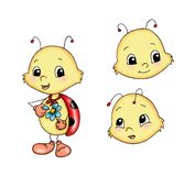 Little ladybird Stock Images