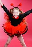 Little Ladybird Royalty Free Stock Photography