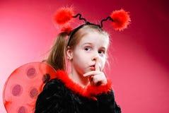 Little Ladybird Royalty Free Stock Photos