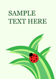 Little ladybug on grass. Vector card with copy space for your text Stock Photography