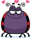 Little Ladybug in Love Stock Images