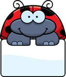 Little Ladybug Sign Royalty Free Stock Photos