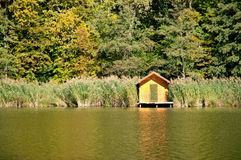 Little lake at the autumn forest,Hungary Royalty Free Stock Image