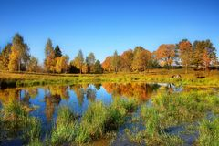 Lake in Autumn Stock Photography
