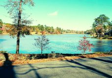 Little lake royalty free stock photography
