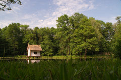 Little lake with duck house Stock Images