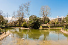 Little lake with ducks in an urban public park, Italy Royalty Free Stock Photography