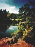Little lake. In the forest Royalty Free Stock Photography