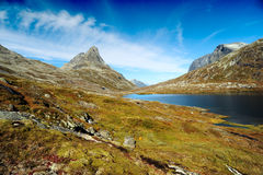 Little lake in the mountains on the green meadow. Royalty Free Stock Photography