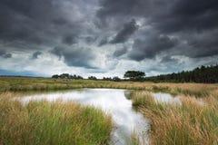 A little lake in National Park De Hoge Veluwe. Stock Images