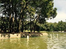 Little Lake. Park in México Royalty Free Stock Photos