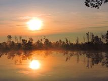 Little lake, plants, sun  and beautiful cloudy sky in swamp, Lithuania Royalty Free Stock Photo