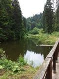 Little Lake at the Tara mountain Royalty Free Stock Image