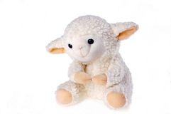 Little lamb Royalty Free Stock Photos