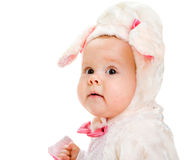 Little lamb Royalty Free Stock Photography