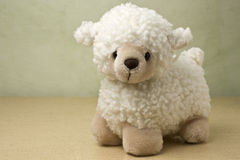 Little Lamb Stock Images