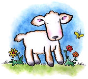 Little Lamb. A cute little lamb wanders through a Spring meadow royalty free illustration