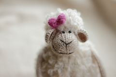 Little lamb soft toy with smile. Curly little sheep toy with smile and a pink flower stock image