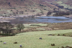 Little Langdale Tarn Royalty Free Stock Images