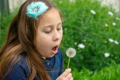 Little latina girl in garden blowing on dandelion stock image