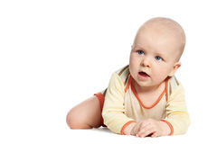 Little laughing crawling baby on white Stock Image