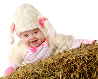 Little Laughing Lamb Royalty Free Stock Images
